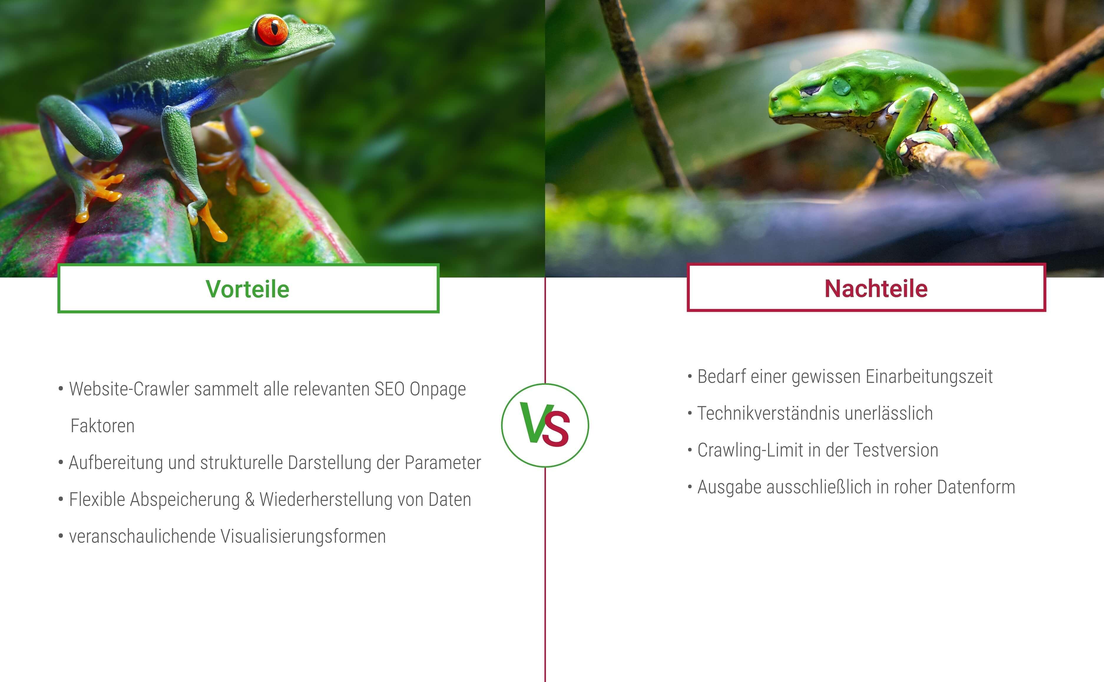 Vorteile und Nachteile des SEO Spider von Screaming Frog